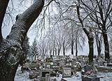 Cemetery in winter
