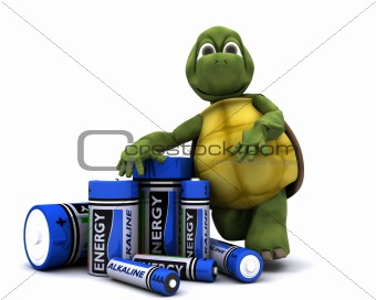 tortoise with batteries