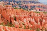 Hoodoo's of Bryce Canyon