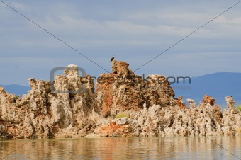 Aerie atop a tufa in mono Lake
