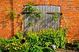 building wall and door tomato and flowers garden 