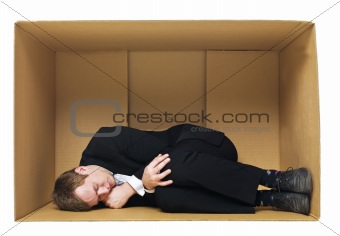 Sleeping in a cardboard box