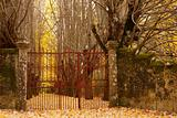 Gate to Autumn Forest