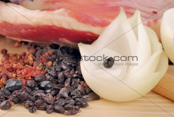 raw lamb meat with onion and spices