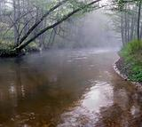 Panorama of a wild river in autumn