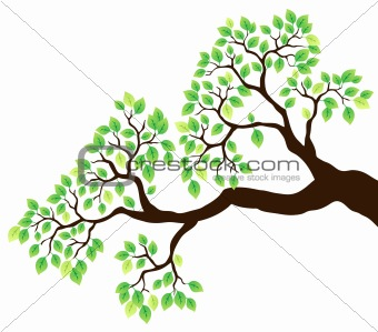 Tree branch with green leaves 1