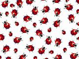Ladybirds