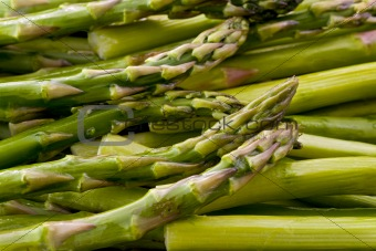 Green Asparagus (Asparagus officinalis)