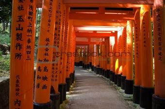 Torii gates at Inari shrine in Kyoto