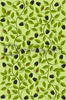 Seamless floral background with a blackberry. Vector illustration.