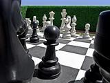 Chess in garden