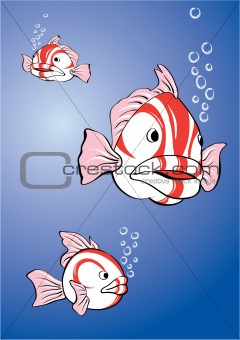 white-red fish
