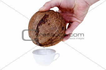 Pour in coconut milk