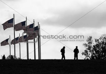 Flags and People in Silhouette