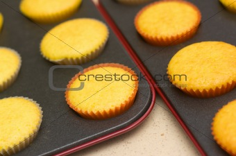 Freshly backed cupcakes on a backing tray. Shallow depth of field