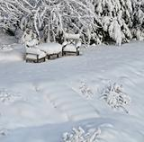 Snowy chairs in winter