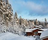 Log houses in snowy winter scenery
