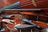 violins and cello