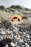 lifebuoy buried in the rocks