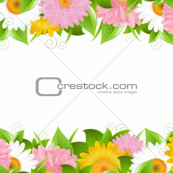 Flower And Leaves Border