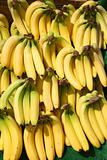 Lots of bunches of bananas outside a greengrocer shop.
