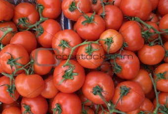 Tomatoes on the vine in a market stall.
