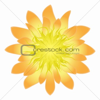 Beautiful flower for your design