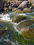 stone in river flow