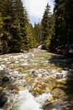 White Water In Denny Creek