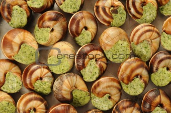 French gastronomy, Bourgogne snails with garlic butter