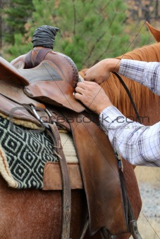 Adjusting saddle