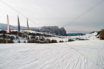 Skii path