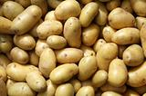 Close up of new potatoes outside a greengrocers.