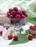 Sweet cherry in glass bowl
