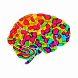 human brain, rainbow dream, vector abstract background