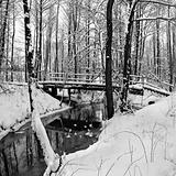 Winter landscape with small river.