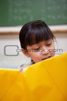 Portrait of a schoolgirl reading