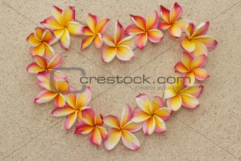 Frangipani/plimeria flower frame in shape of heart on sand