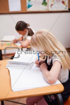 Portrait of pupils working