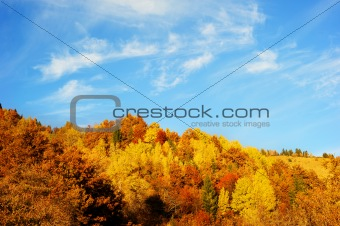 Beautiful autumn mountains