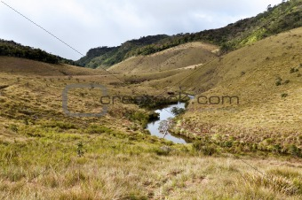 Forest, savanna, and water at Horton Plains