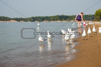 Baby Mom Seagulls Walk Look Down