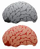 vector set of human brains