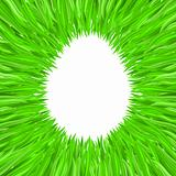 The contour of the egg of the grass