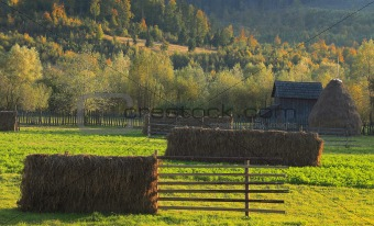 Landscape in Bucovina,Romania