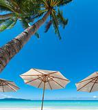 white parasols