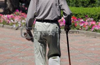 Portrait of senior man walking  in park