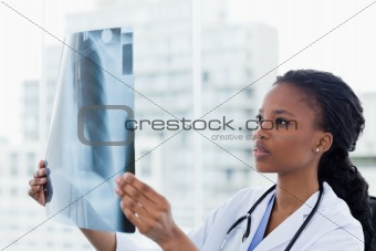Female doctor looking at a set of X-rays