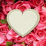 White paper heart form on pink roses background