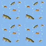 Freshwater fish